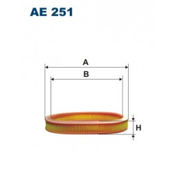 AE 251